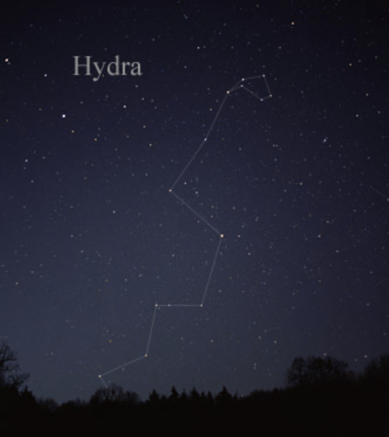 A long string of stars rising over a horizon, linked by lines, labeled Hydra.