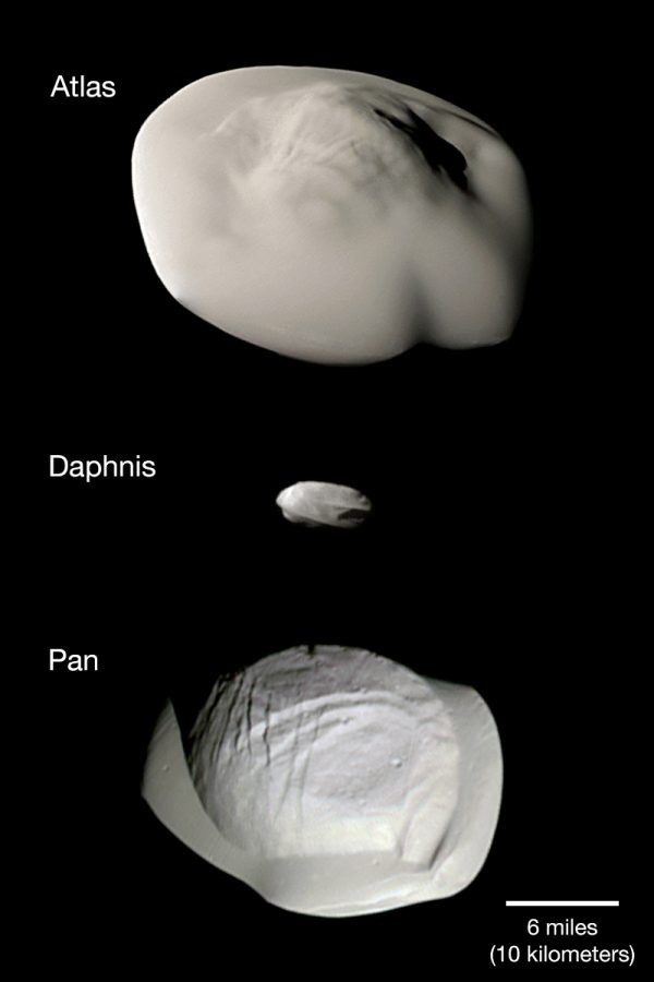 Space rocks, Atlas and Pan large, Daphnis small.