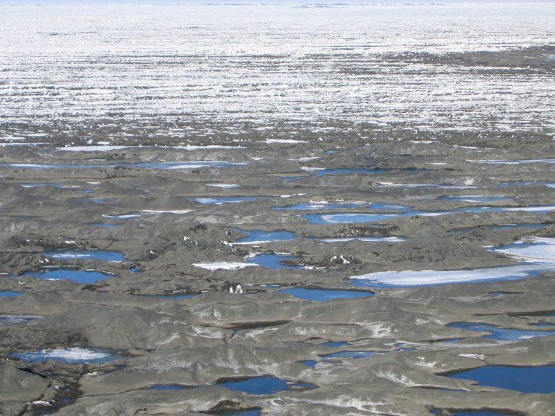 Many blue roundish pools on gray ice landscape.