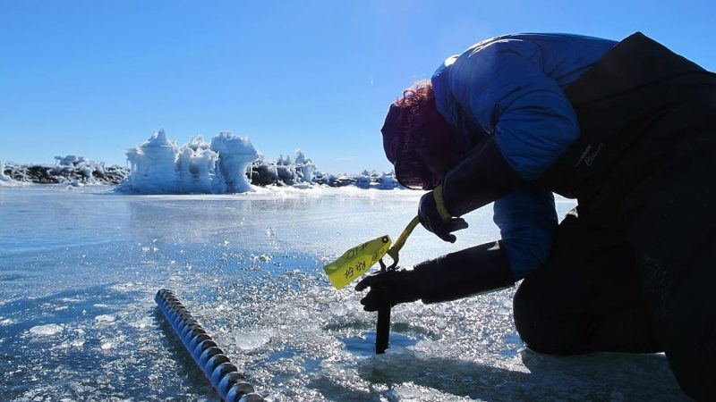 Scientist Becky Goodsell kneeling and peering at seismometer on icy landscape with pools of water.