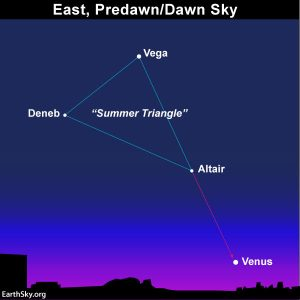Star chart showing 3 bright stars of Summer Triangle, with star Altair closest to Venus.