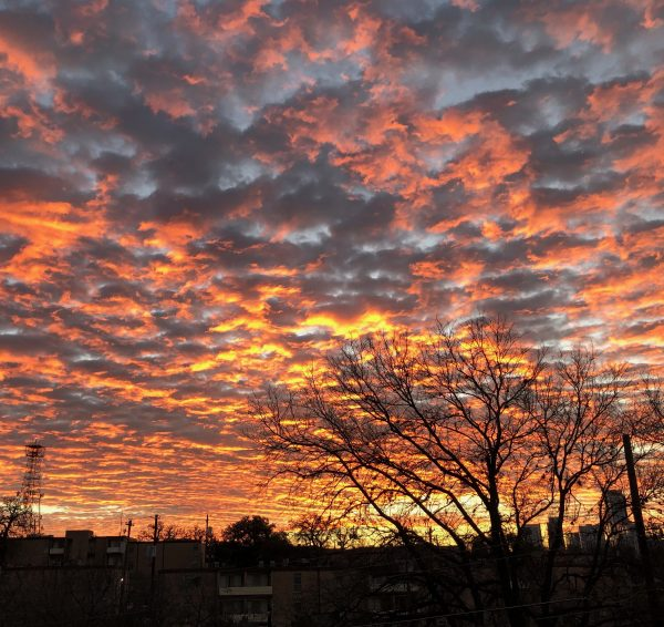 A very orange sunrise, with brightly lit clouds extending from the eastern horizon with some bare trees on one side.