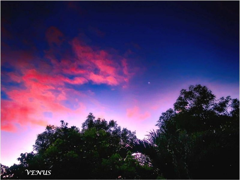 Bluish sky and pink clouds, with white dot, Venus, shining brightly.