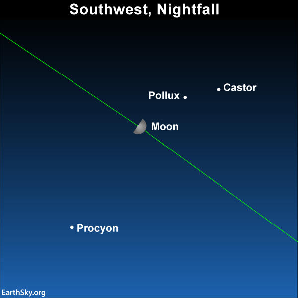 Chart showing moon, Castor, Pollux, Procyon on April 12, 2019.