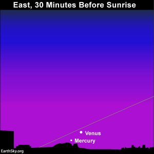 Chart showing Northern Hemisphere view of Mercury and Venus. They are low in the sky.