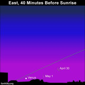 Chart showing moon and Venus, April 30 and May 1, 2019, Northern Hemisphere.