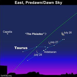 Moon and Taurus before sunrise.