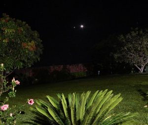 Dots of planets and a crescent moon behind a brightly lit garden.