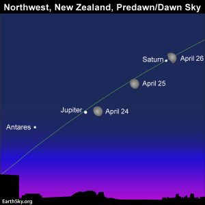 Sky chart for New Zealand
