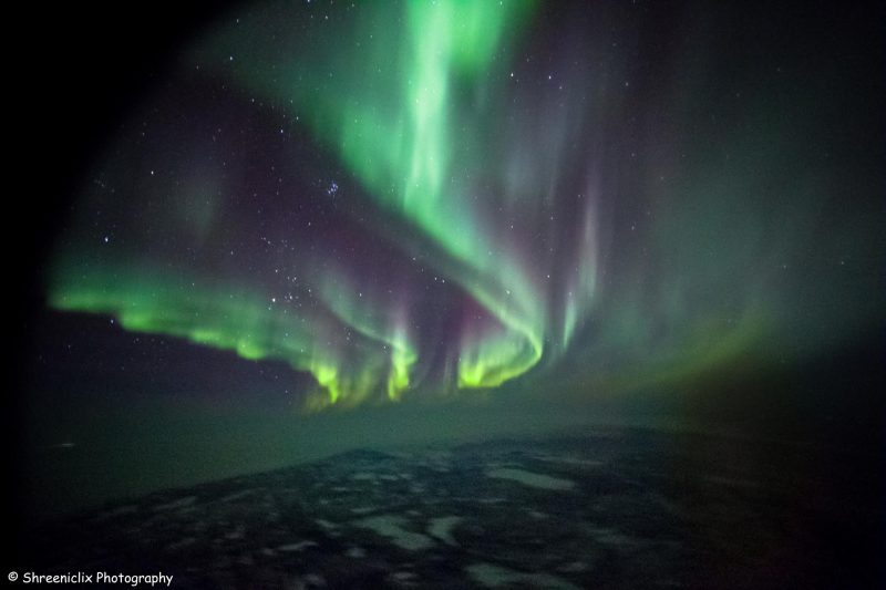 Aurora borealis, winding curtains of green light over icy sea.