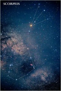 Photo of the graceful shape of Scorpius the Scorpion, with the red star Antares at the Scorpion's Heart blazing brightly.