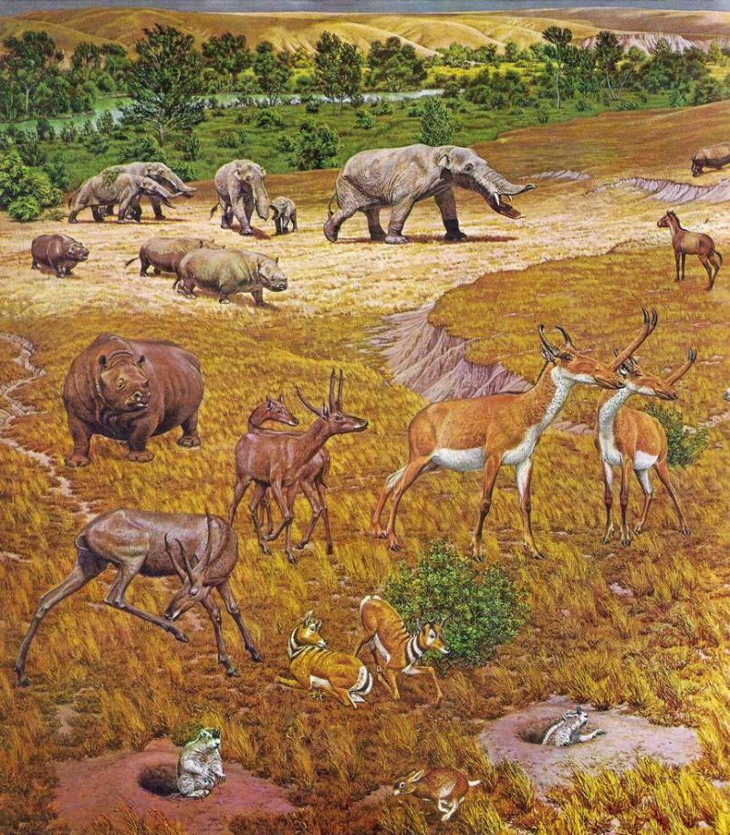Plains and riverbottom with many odd animals including mastodons.