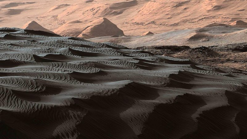 Array of many dark sand dunes seen from the ground.