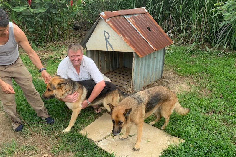 Squatting man embracing large dog, doghouse with hole in roof, another large dog.