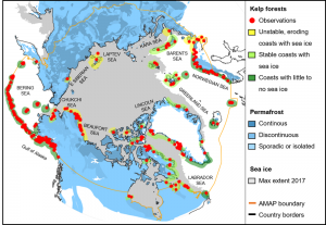 Map of the Arctic, with red dots indicating kelp forests.