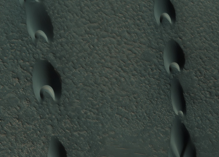 Pointed sand dunes, one end deeply indented.