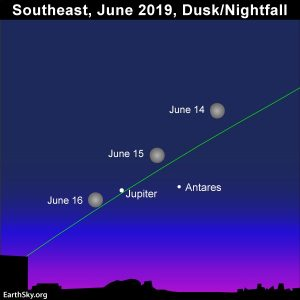 Bright moon swings by the star Antares and planet Jupiter from June 14 to 16, 2019.