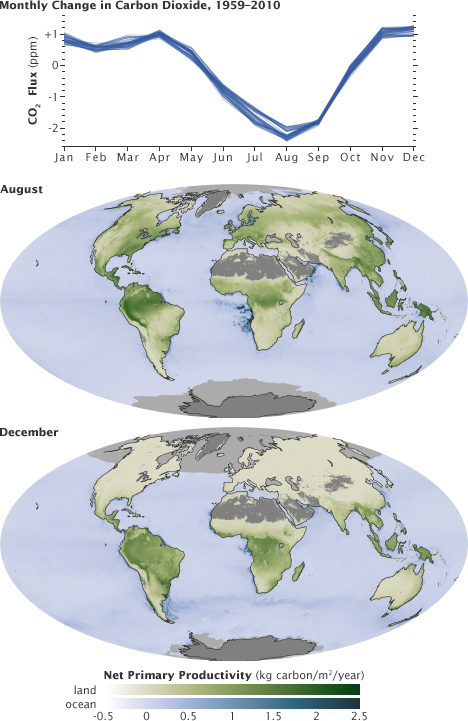 Maps of world and graph showing differing amounts of C02 in August and in December.