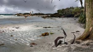 Illustration of sandy coastline with pterodactyls and other dinosaurs.
