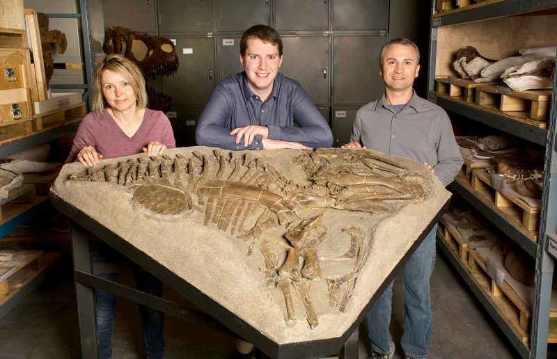 Woman and two men scientists standing behind a large stone with a skeleton imprint.
