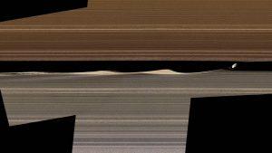Thin gray and brown horizontal stripes.
