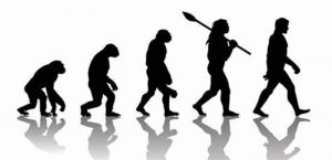 Silhouettes of apes and humans walking