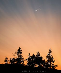 Thin crescent moon in an orange sky.