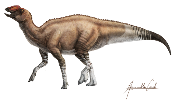Four-legged dinosaur with raised head, open mouth, long stiff striped tail.