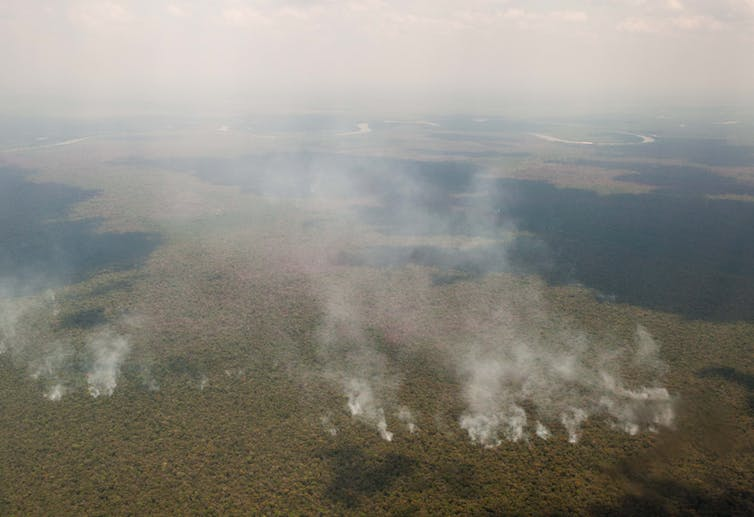 Aerial view of multiple point sources of billowing white smoke over green forest.