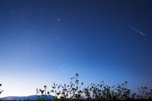 Bright meteor above sunflowers, with mountains in the distance.