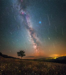 Milky Way and meteors, orange horizon, silhouette of a tree.