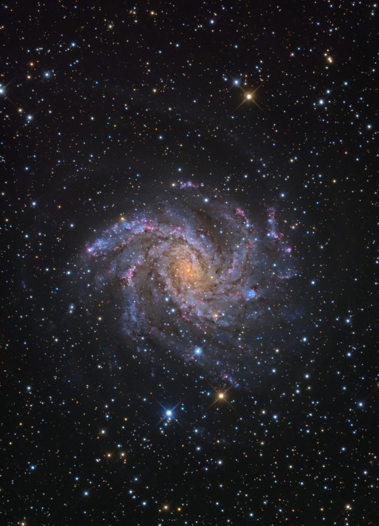 Colorful galaxy mostly pink blue and white spiral arms in medium dense starfield.