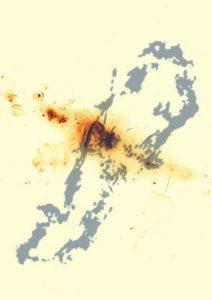 Gray blob outline with dark orange blob in the center.