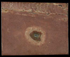Fossil meteorite.