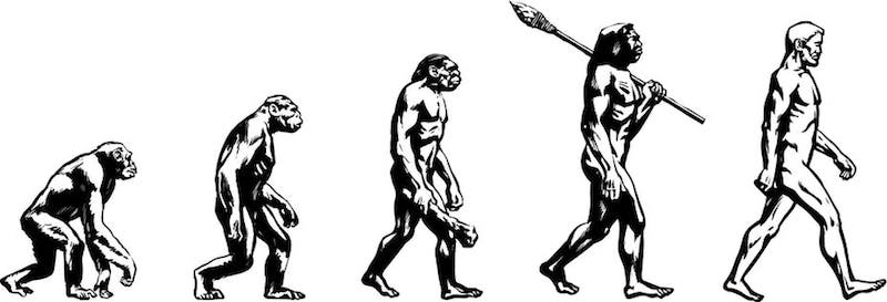 Chimpanzee, walking ape, cave man with club, Neanderthal man with spear, blond modern man.