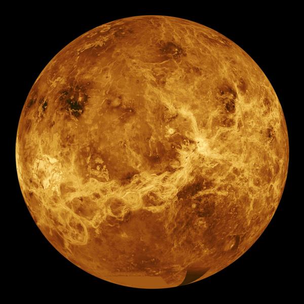 Mottled orange ball.
