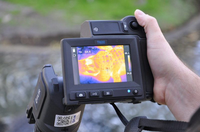 Hand holding camera with false-color image on its little viewfinder screen.