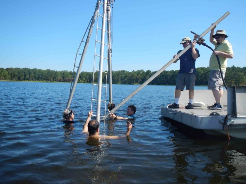 Men standing on a dock holding a large pole, some other men shoulder-deep in pond.