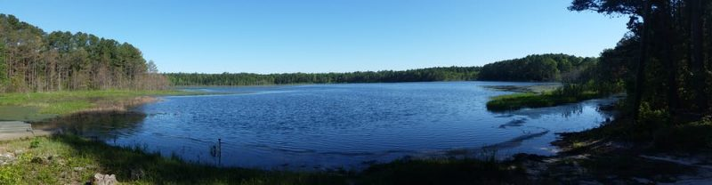 Circular blue pond surrounded by forest under a cloudless sky.