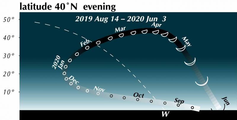 Chart showing Northern Hemisphere track of Venus, with size and phases, from August 2019 to June 2020.