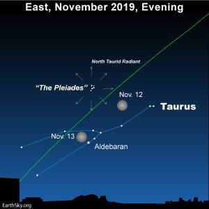 Moon moves through Taurus the Bull, November 12 and 13, 2019.