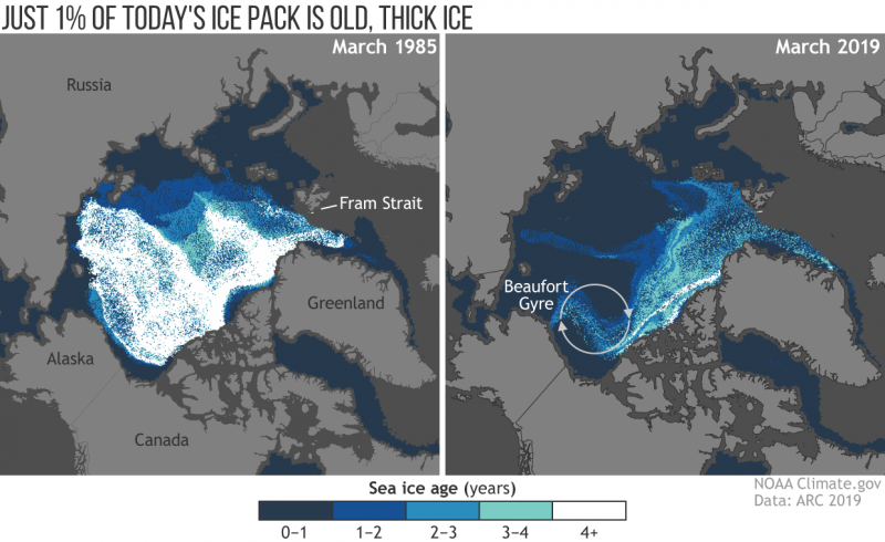Side by side maps, lots of Arctic ice on left, very little on right.
