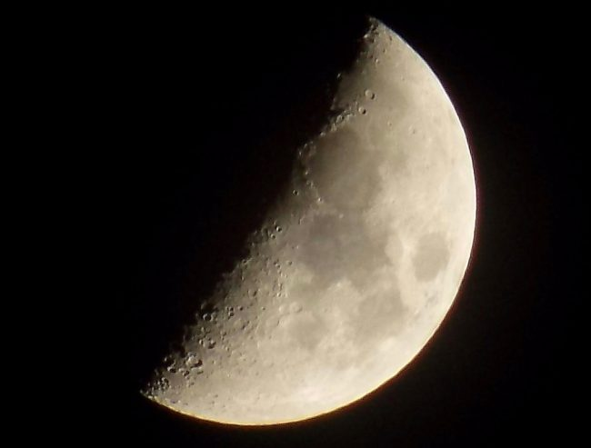 The  moon with almost half the near side illuminated - a nearly 1st quarter moon.