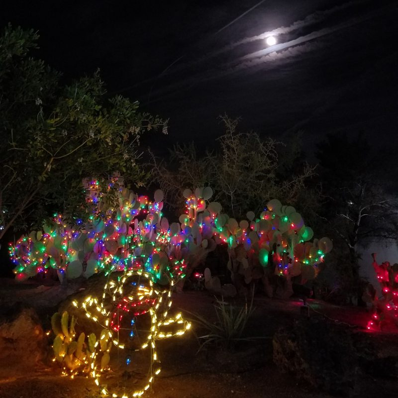 Colored lights strung over prickly pear against a dark sky with a full moon between glowing cloud stripes.