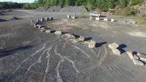 Some of the fossilized roots uncovered at the quarry in New York. Via Cardiff University