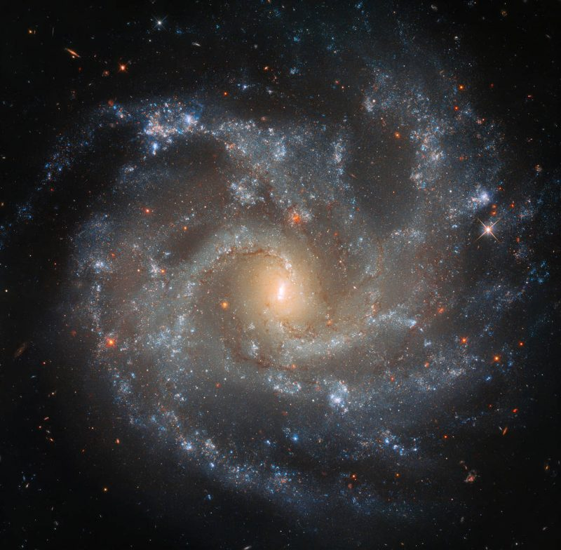 Spiral galaxy with yellow center.