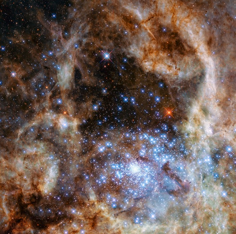 Many brilliant blue-white stars close together surrounded by wispy streamers, one bright red star in distance.