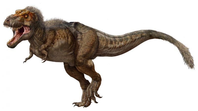 Large dinosaur with scaly skin and feathers.