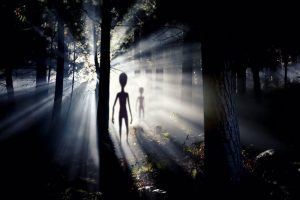 Spooky big-headed human-like silhouettes in shadowy forest.