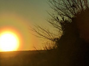 A round orange sun on the horizon, encircled by concentric rings of colored light.